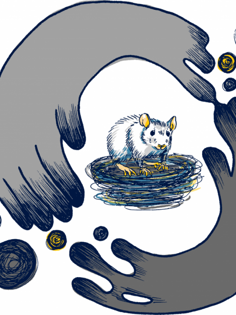 Illustration of a anxious rat inside a bubble of arms being separated from the rat